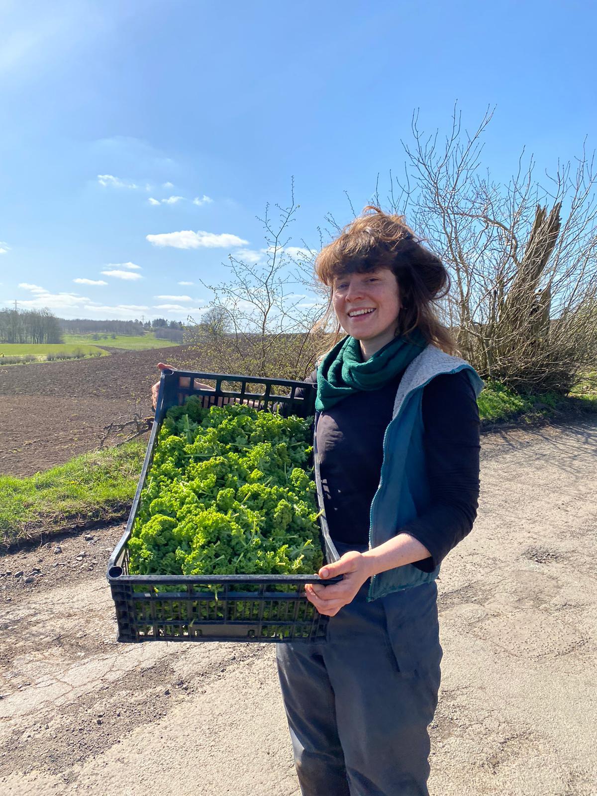 Glasgow Locavore donates kale to GCFN